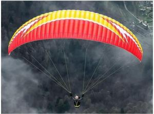 Swing Arcus RS - Small (only ten flights on it)